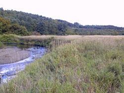 Wells River Conservation Area